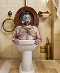 toilet diver